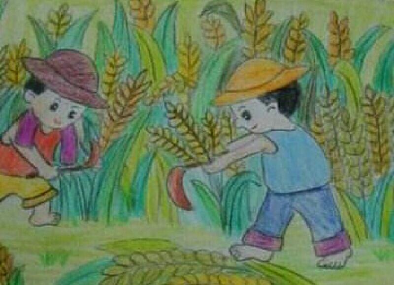 怎样描述秋天金黄色的稻谷和农民伯伯的秋收喜悦心情.