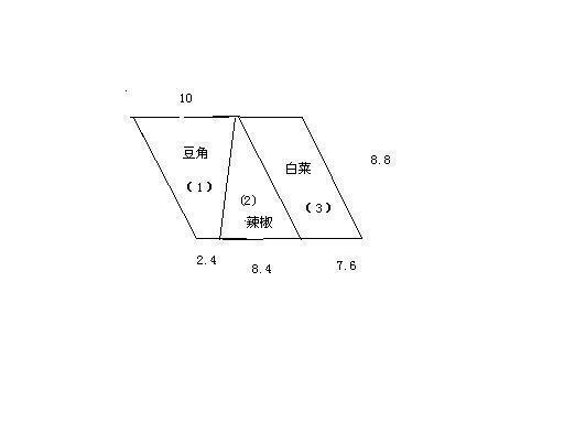 将一块平行四边形菜地分成三块种菜,每块菜地占地多少平方米?