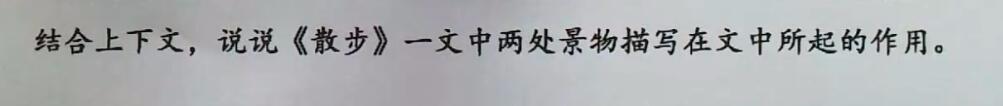 七年级语文